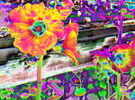 Flowery_Acid_Trip_by_CrystalSister
