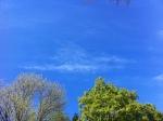 clouds 031