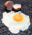 egg on pavement