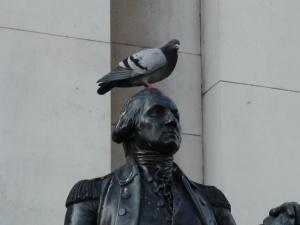 Pigeon-on-Statue