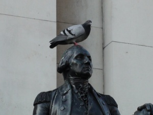 Pigeon-on-Statue