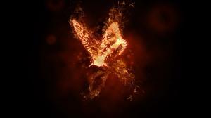 fire butterfly